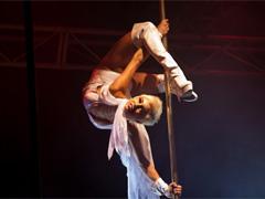 Что нужно знать для занятий pole dance